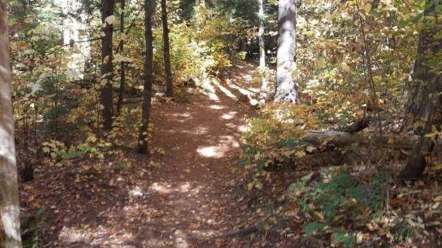 Step Falls, Newry, Maine hiking trail.