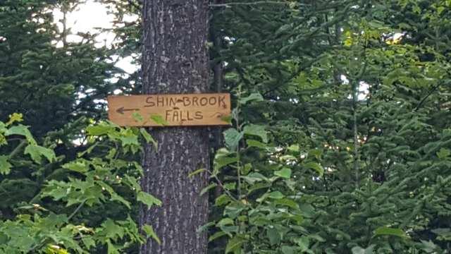 Shin Falls sign.