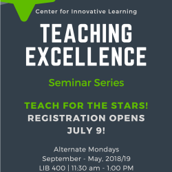 Teaching Excellence Seminar Series
