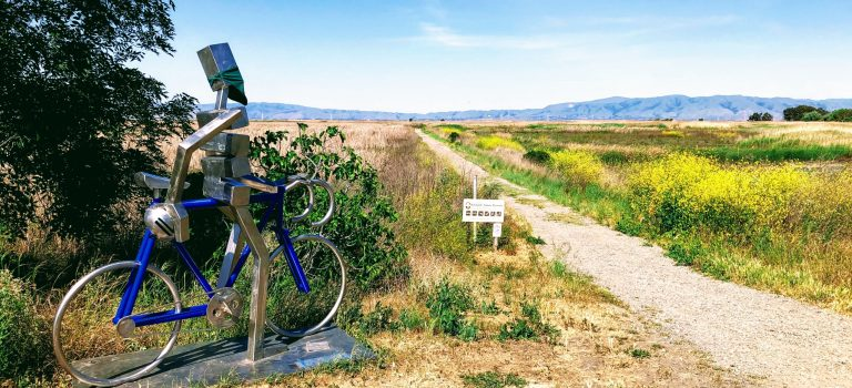 Bliss in the moment by James Moore on the Bay Trail, Palo Alto.