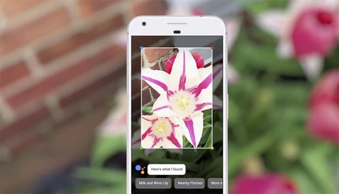 Google Lens Visual Search Technology