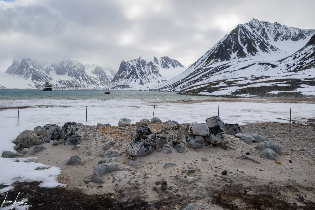 Crociera alle Svalbard: Gravneset