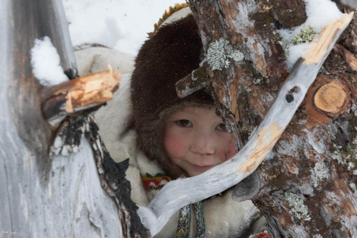 Nenets della Siberia