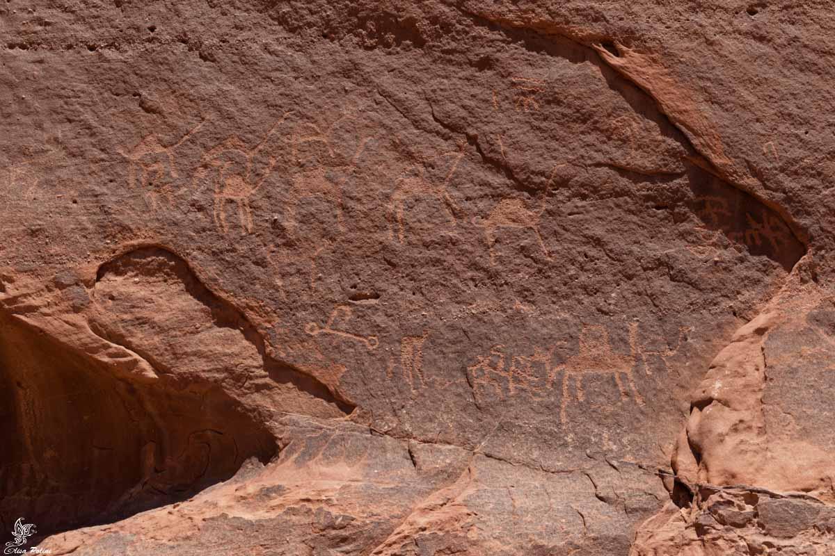 Wadi Rum: incisioni rupestri