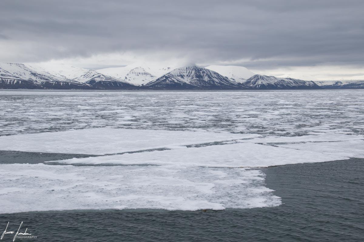 Sole di Mezzanotte: alle Svalbard in estate c'è sempre luce anche quando è brutto tempo!