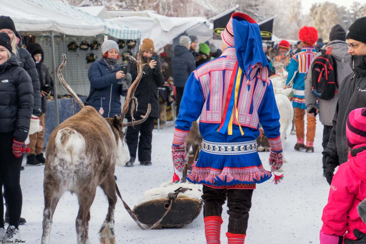 Jokkmokk Market: Sfilata delle renne