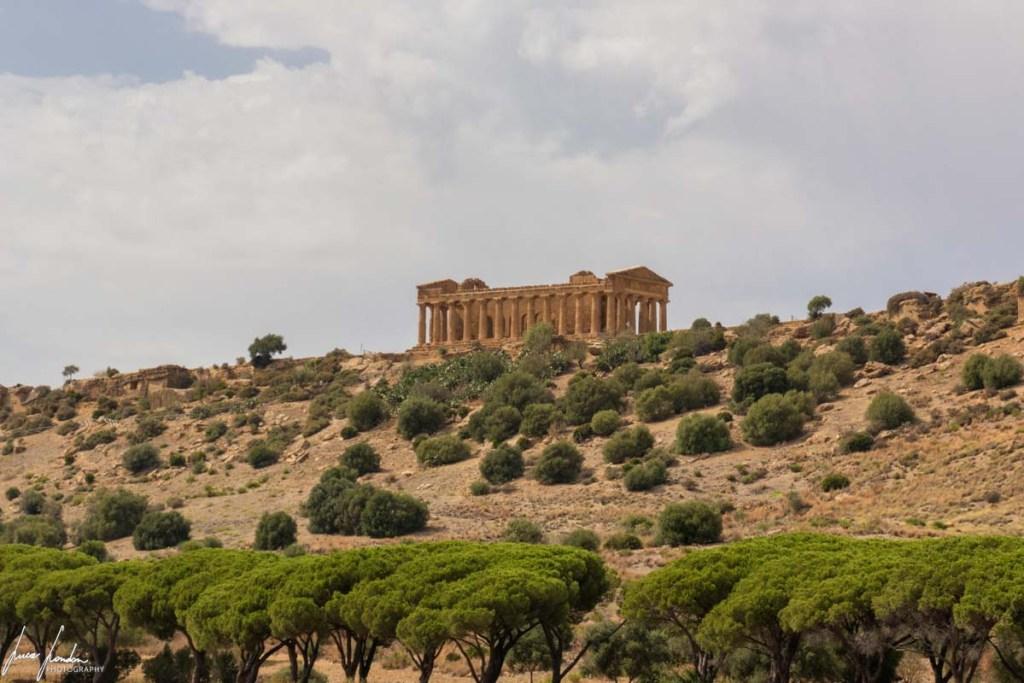 Valle dei Templi: Panoramica sul Tempio della Concordia