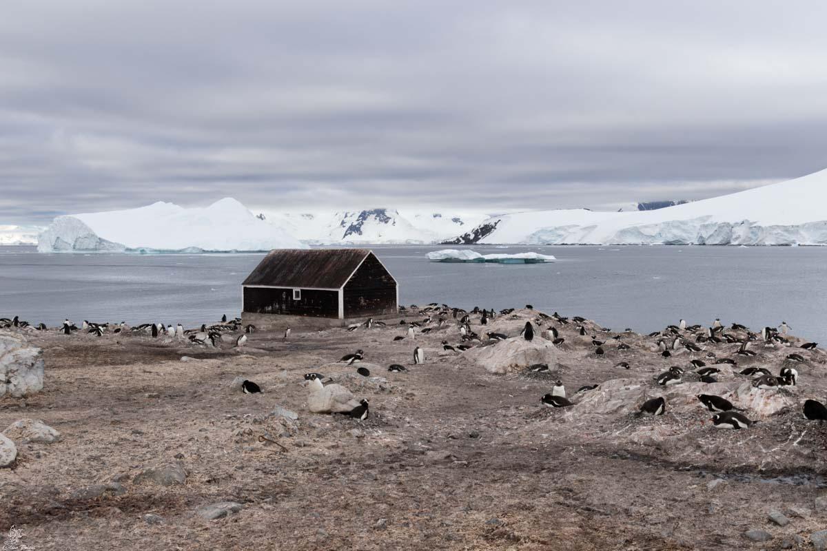 Antartide: Base Antartica Cilena Gonzalez Videla