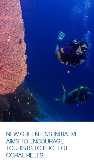 Dive tourism: how to minimize your environmental impact