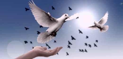 聖經金句:憂慮, 憂愁, 歎息 | 你們要將一切的憂慮卸給神, 因為祂顧念你們.