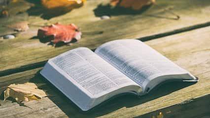 聖經金句|虧損:與智慧人同行的, 必得智慧. 和愚昧人作伴的, 必受虧損.