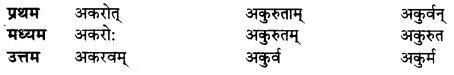 UP Board Solutions for Class 10 Hindi धातु-रूप img-10