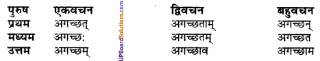 UP Board Solutions for Class 10 Hindi धातु-रूप img-5