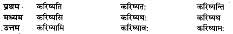 UP Board Solutions for Class 10 Hindi धातु-रूप img-9