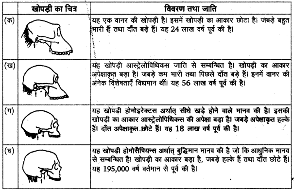 हादजा जनसमूह UP Board Solutions For Class 11 History Chapter 1
