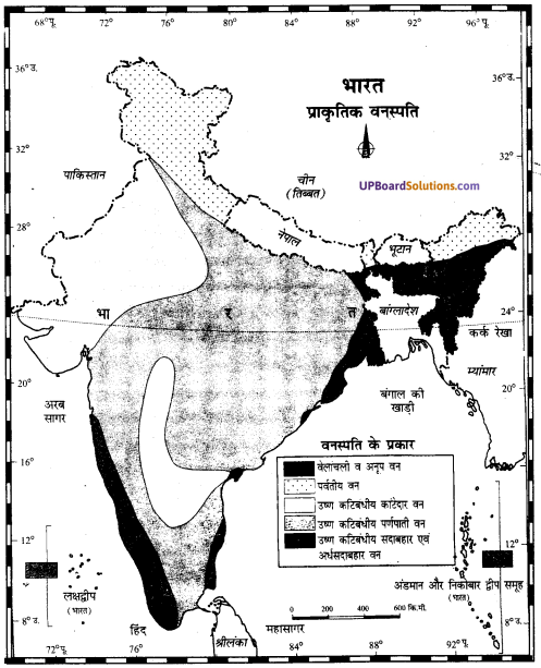 UP Board Solutions for Class 11Geography Indian Physical Environment Chapter 7 Natural Hazards and Disasters (प्राकृतिक संकट तथा आपदाएँ) img 19