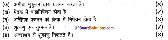 UP Board Solution Class 8 Science Chapter 7 जन्तुओं में जनन