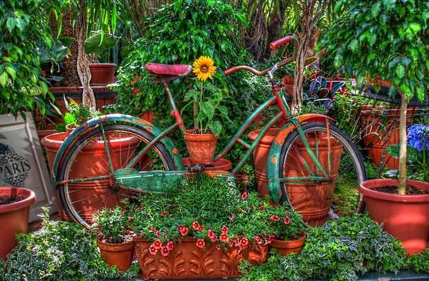 upcycled moto jardín de edad el uso de flores para la decoración en el patio trasero