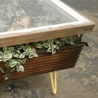 Stunning coffee table with indoor garden for a healthier interior