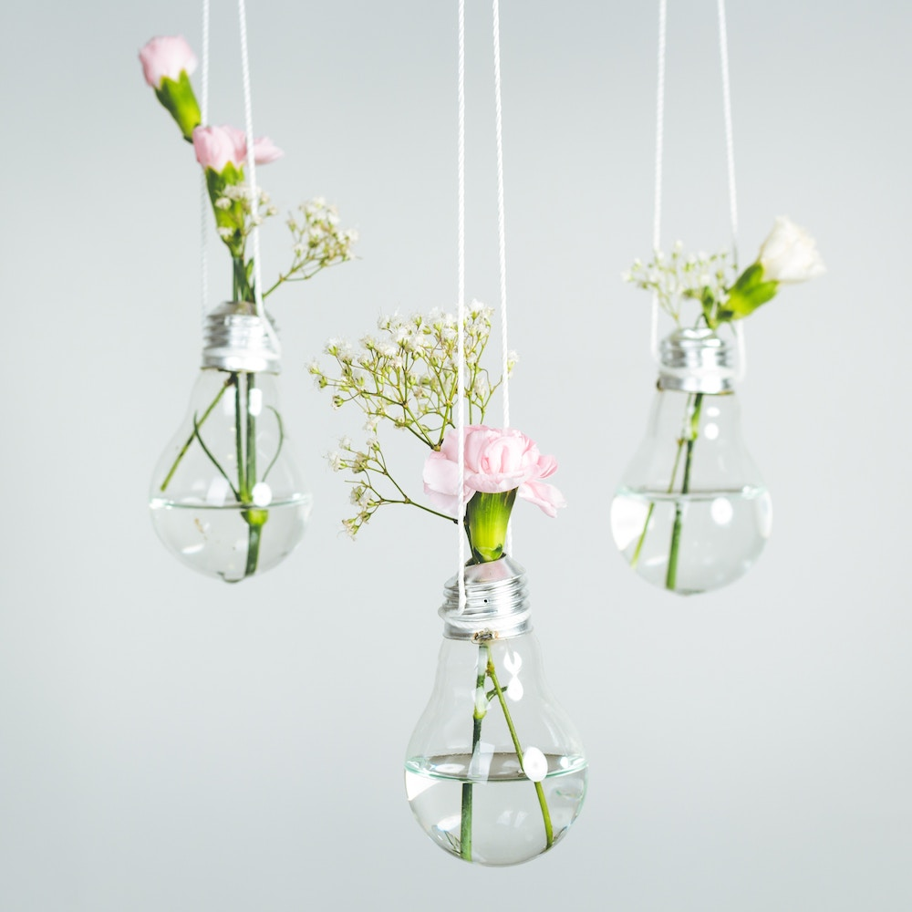 Glühbirnen Vase hängend