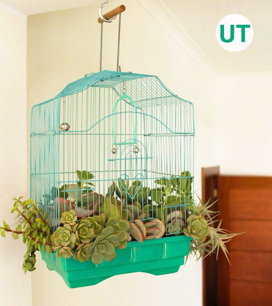 Upcycled garden ideas - birdcage planter