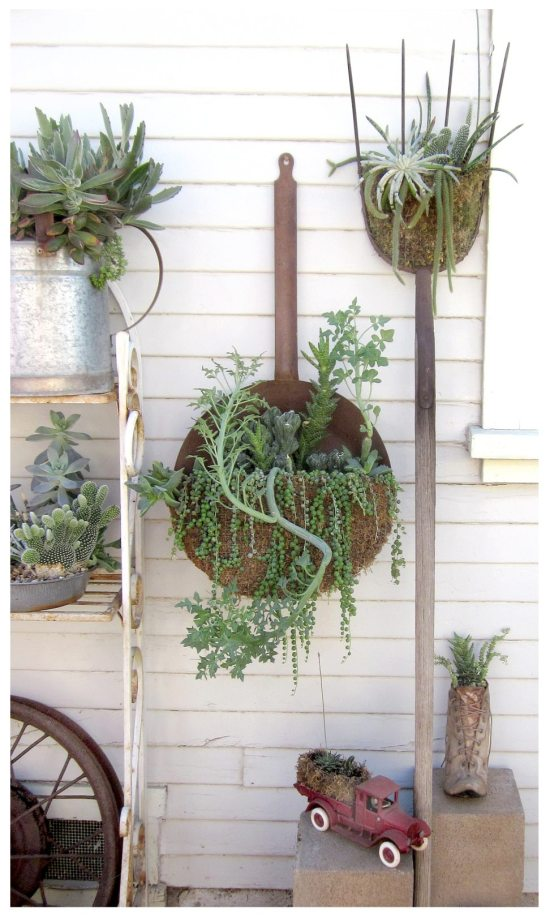 Upcycled garden ideas - rusty containers