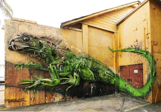 Trash animal iguana