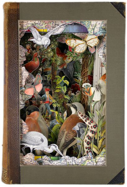 Art From Dissected Books By Alexander Korzer Robinson