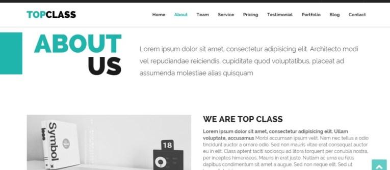 TopClass-Wordpress-business-theme