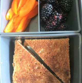 Kids lunch box healthy