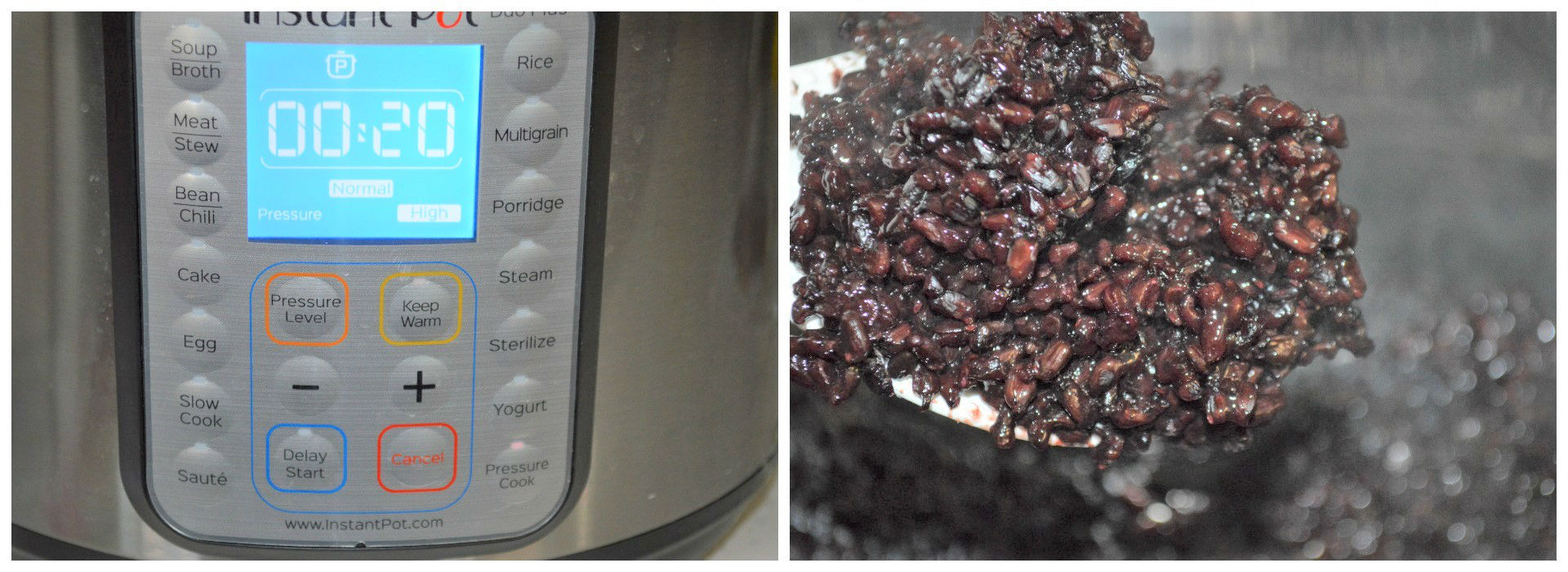 black rice instant pot