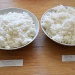 soaked vs unsoaked basmati rice