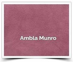 Ambla Munro
