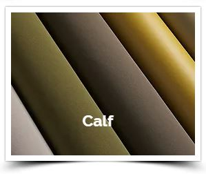 Calf Crib5