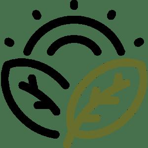 UP Healing and Wellness