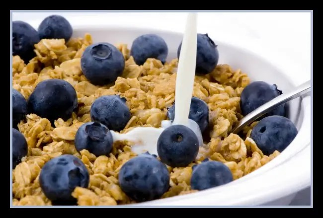 A good start to any day. Fresh blueberries and granola