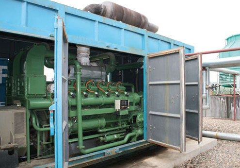 Luohe  Landfill Gas CDM Project Gas Engine