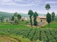 Xuyong Haushalts Biogas Gold Standard Projekt