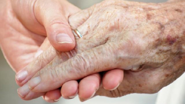 Elderly senior citizen's hand held by younger hand_1342153031442645-159532