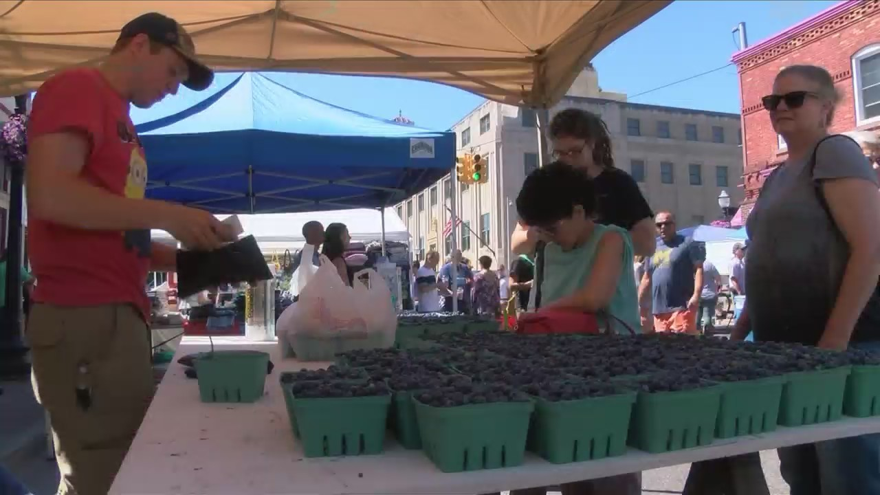 Blueberry_Festival_Auditions_0_20180727030943