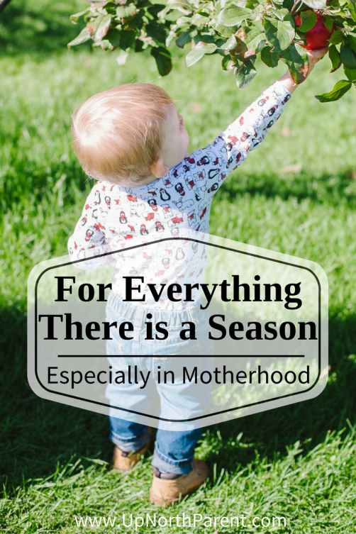 For Everything There is a Season, Especially in Motherhood | Season in Motherhood and Business as an Entrepreneur | everything is a season in motherhood