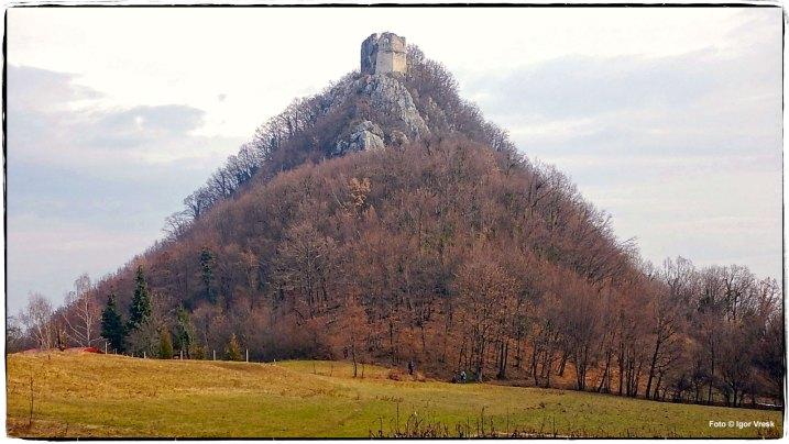 Stari grad Okić