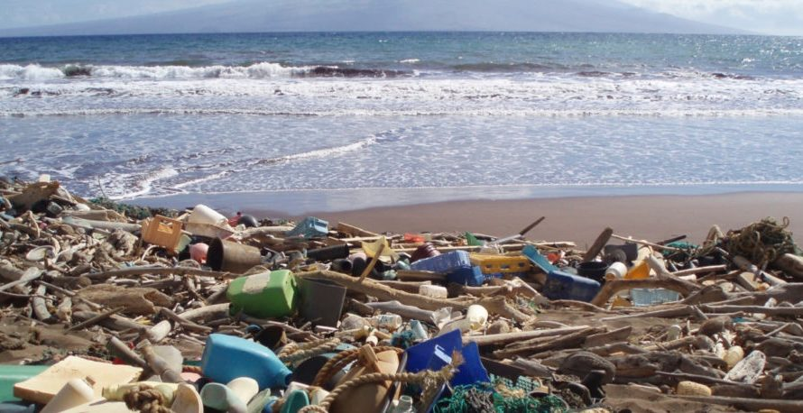 We need your help to tackle plastic pollution!