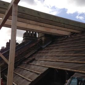 roof81-768x1024