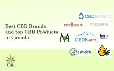 Best CBD Brands in Canada and top Products