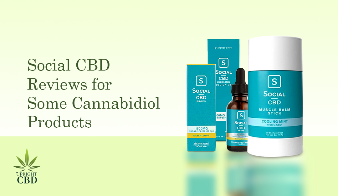 Social CBD Reviews: Is it a great choice?
