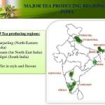 Major Tea producing states in India