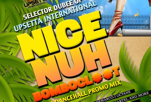 Nice Nuh Bombocl**t Mix by Selector Dubee