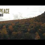 delly-ranx-rise-the-peace-music-video