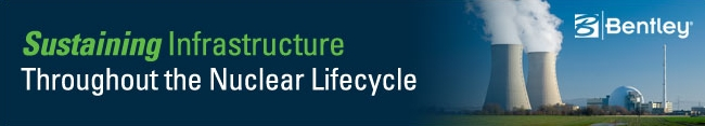 Sustaining Infrastructure throughout the nuclear life cycle